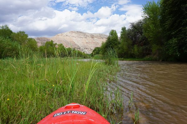 Paddling the Verde River